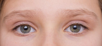 Eyes. Of a young girl Royalty Free Stock Photography