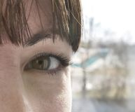 Brown eyes of a young girl in the camera, close-up stock photo