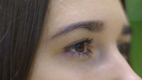 Eyes of young woman slow motion, beautiful female brunette blink extreme closeup. Stock footage stock video