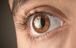 Eyes. Your eyes are the window to your soul Stock Photos