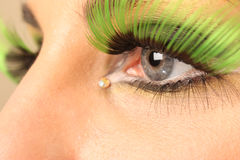 eyeshadow Obraz Royalty Free