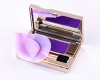 Eyeshadow in compact Royalty Free Stock Image