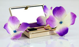 Eyeshadow in compact Royalty Free Stock Photo