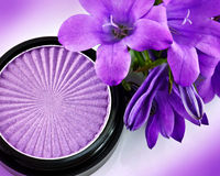 Eyeshadow and flowers Royalty Free Stock Photography