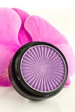 Eyeshadow and petals Stock Photography