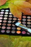 Eyeshadows palette. Eye shadows palette with brush and leaves Royalty Free Stock Images
