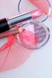 Eyshadow d'amd de rouge à lievres de Rose Image libre de droits