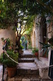 Eze 4 - street. Small street in eze with plants Stock Images