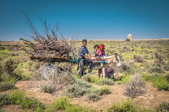 Ezel met kar in Turkmenistan stock foto