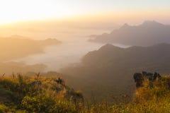 Fá do qui do plutônio - Chiangrai Tailândia Foto de Stock