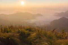 Fá do qui do plutônio - Chiangrai Tailândia Fotografia de Stock Royalty Free