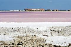 Fábrica cor-de-rosa do lago de sal Imagens de Stock Royalty Free