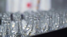 Fábrica da garrafa de vidro Correia transportadora closeup video estoque