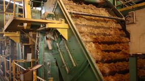 Fábrica de cana-de-açúcar filme