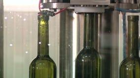 Fábrica de engarrafamento do vinho video estoque