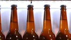 Fábrica de la cerveza Parte final de la parte tecnológica de producir de la cerveza transportador en la cervecería, cola de botel almacen de video