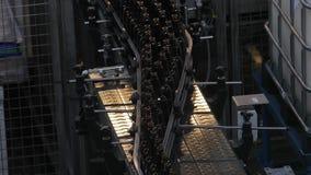Fábrica de la cerveza que se alinea las botellas almacen de video