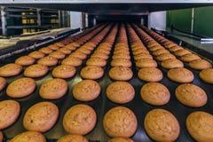 Fábrica de la confitería Cadena de producción de las galletas de la hornada Foco selectivo fotos de archivo libres de regalías