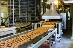 Fábrica de la confitería Cadena de producción de las galletas de la hornada Foco selectivo fotografía de archivo