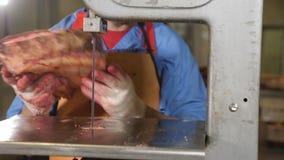 Fábrica de la elaboración de la carne El primer tiró de una sierra para la carne Equipo moderno de la fábrica Fábrica de la carne almacen de video