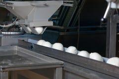 Fábrica de Provola Ricotta do Mozzarella Fotos de Stock