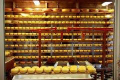 Fábrica de queijo fotos de stock