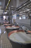 Fábrica de queijo moderna: Pamigiano Reggiano Imagem de Stock Royalty Free