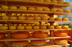 Fábrica de queijo na Holanda Fotos de Stock Royalty Free