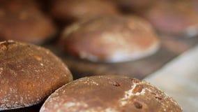 Fábrica de tratamento do alimento Linha de produção do pão de Rye Processo de manufatura vídeos de arquivo
