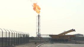 Fábrica del aceite almacen de video