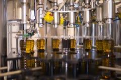 Fábrica del aceite de oliva, Olive Production Fotografía de archivo