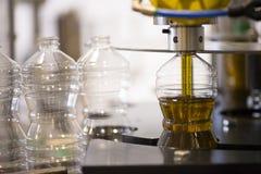 Fábrica del aceite de oliva, Olive Production Foto de archivo libre de regalías