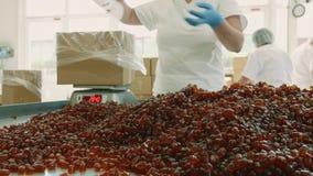 Fábrica del caramelo Caramelos del embalaje del obrero almacen de metraje de vídeo