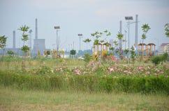Fábrica del petróleo vista del parque del oeste Imagen de archivo libre de regalías