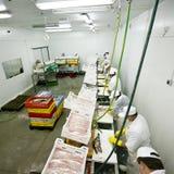 Fábrica do alimento de peixes fotografia de stock royalty free