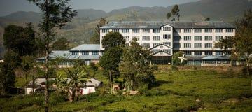 A fábrica do chá de Bluefield e o chá centram-se no labookellie, Sri Lanka, o 14 de janeiro de 2017 Imagens de Stock Royalty Free