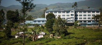 A fábrica do chá de Bluefield e o chá centram-se no labookellie, Sri Lanka, o 14 de janeiro de 2017 Imagem de Stock Royalty Free