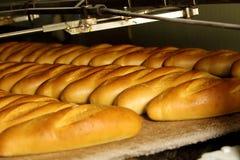 Fábrica do pão, linha de produção Foto de Stock