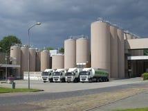 Fábrica do pó de leite Fotografia de Stock Royalty Free