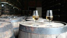 Fábrica do rum Fotos de Stock Royalty Free