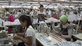 Fábrica do vestuário: Trabalhadores de vestuário fêmeas com observação do supervisor video estoque
