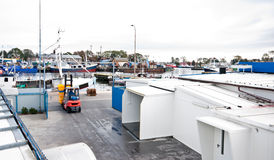 Fábrica dos peixes na porta Imagens de Stock Royalty Free