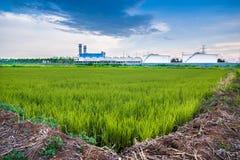 A fábrica e o campo Foto de Stock Royalty Free