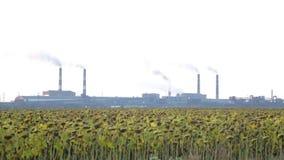 Fábrica industrial El humo hediondo sale de los tubos Planta en la distancia En el primero plano un campo con almacen de metraje de vídeo