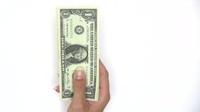 Fã do dólar video estoque