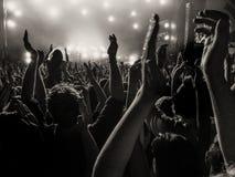 Fãs Cheering em um concerto imagens de stock royalty free