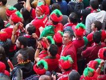 Fãs de Portugal vestidos acima Foto de Stock Royalty Free