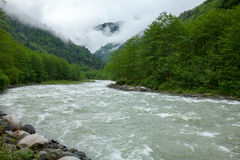 Fırtına River in Northern Turkey Royalty Free Stock Photos