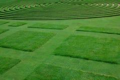 Fähig getrimmter Rasen lizenzfreies stockbild