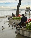 Fähren in Istanbul Pendlerfähren haben auf Th funktioniert Stockbild